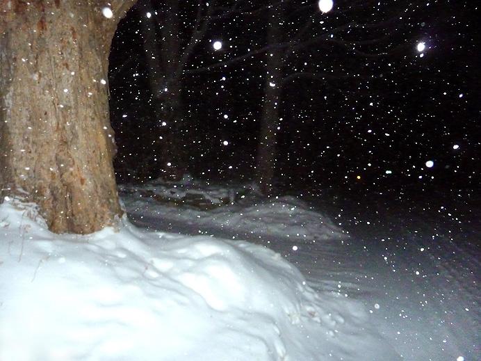 Nighttime snow