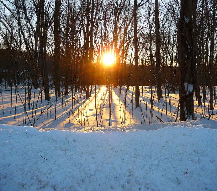 Sunset on snow