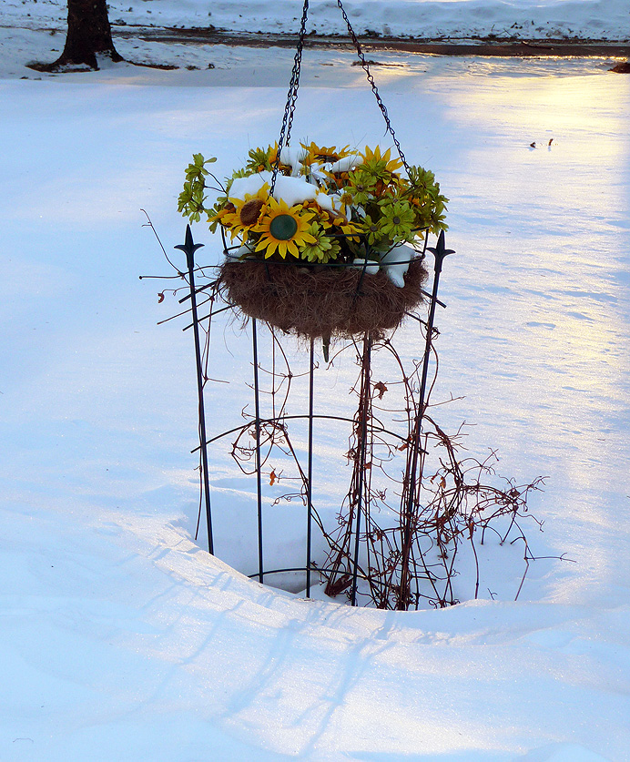Artificial flowers in snow