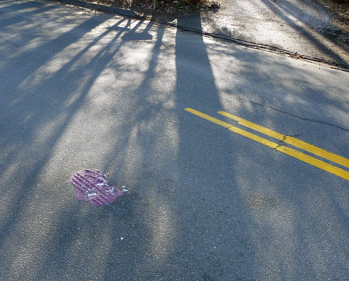 Purple clay smashed on road