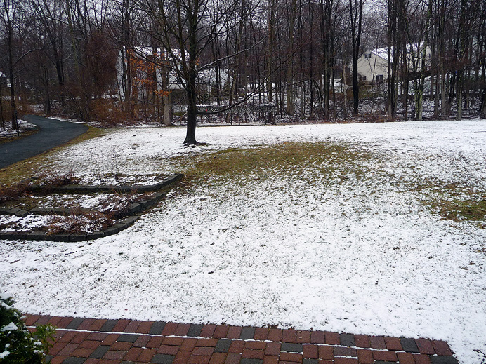 Snow on lawn