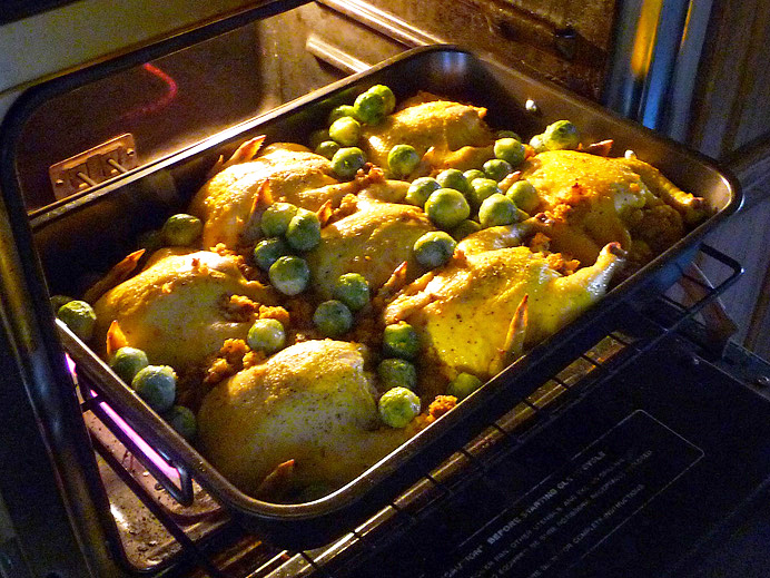 Cornish hens in oven