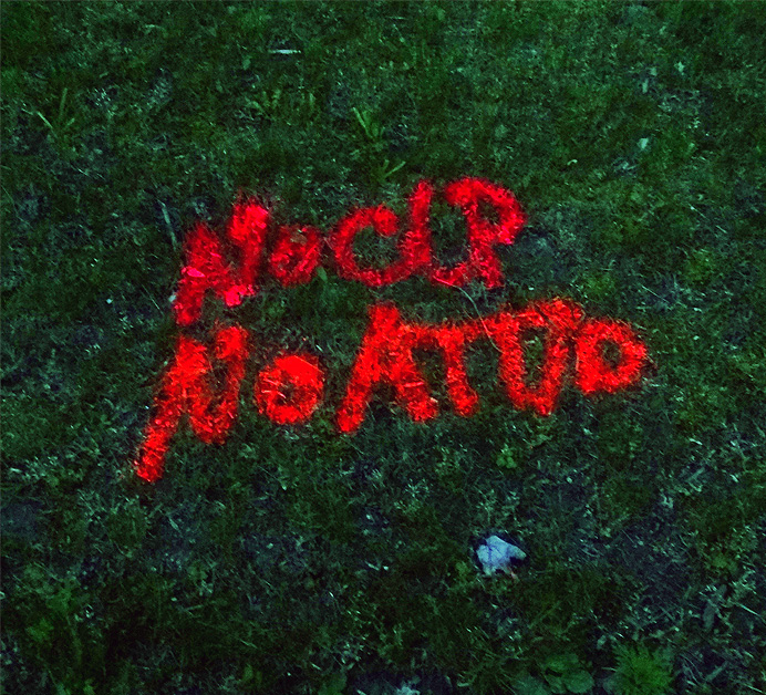 Words painted on grass