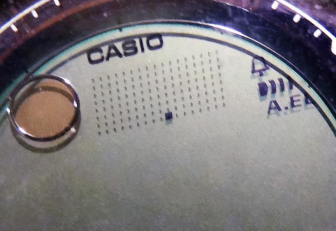 Wrist barometer